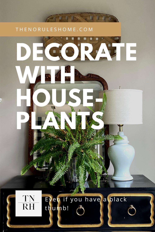 Decorating with houseplants2